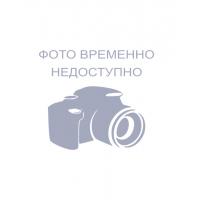 Полка стеклянная Холодильника БИРЮСА 0030009000 ( 518 x 290 mm. )